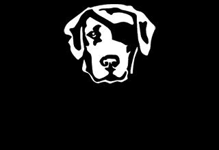 Hundeschule Pirate-Dogs Lübeck